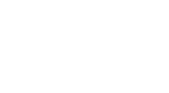 About us - blueprint of the brain